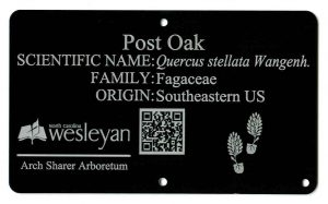 arboretum tag with logo and QR Code