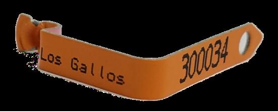 fusion orange wing band