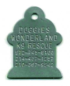 fire hydrant dog tag