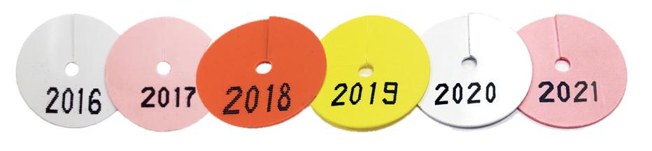 year discs