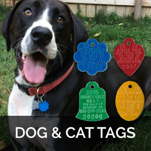 rabies vaccination tags