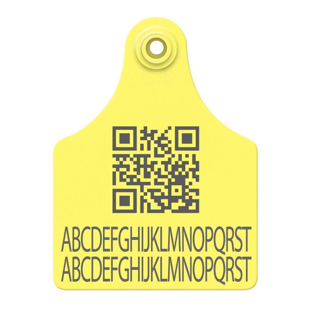 AllFlex plastic ear tags for cattle