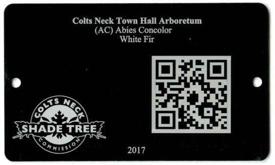 tree city USA tag