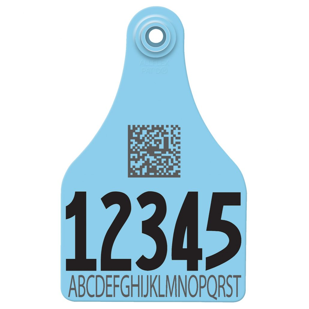 cattle ear tag used as a vineyard tag