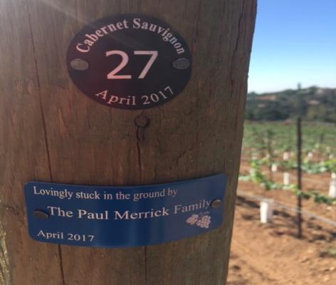 vineyard tags on a post, row tag