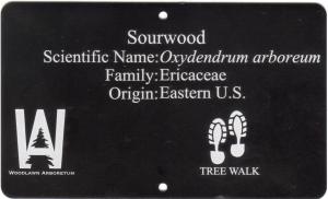 logo on a tree tag