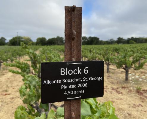 vineyard tag